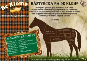 hästvecka_de_klomp